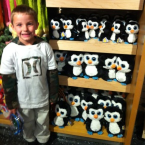 So....many...penguins....